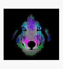 Acrylic Wolf  Photographic Print