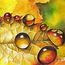 8 water drops by Sherry Cummings