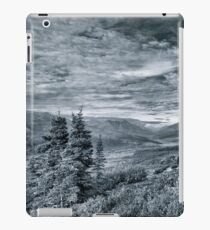 Guardian of the Valley iPad Case/Skin