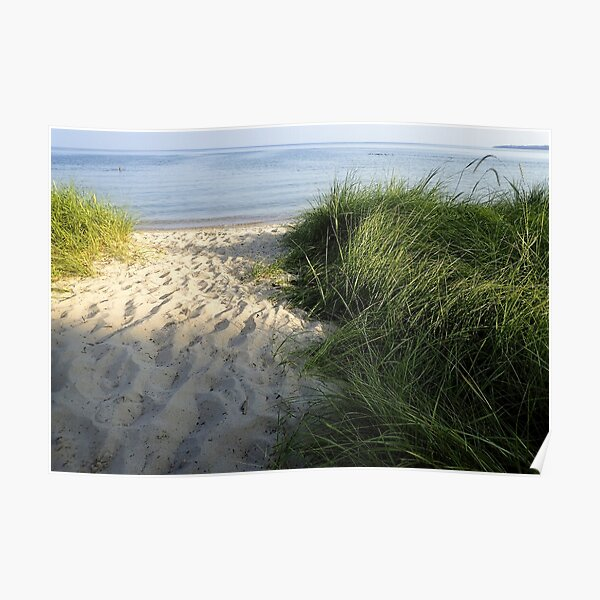 Sandy Pathway to the Lake Poster