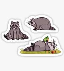 Simply Raccoon Sticker