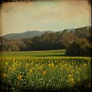 Once Upon a Time a Field of Flowers by VictoriaHerrera