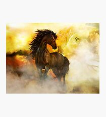 Chitto Black Spirit Horse Photographic Print