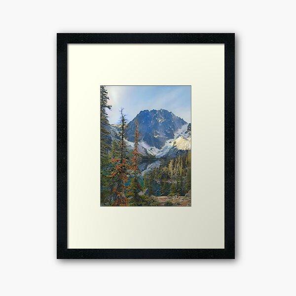 Dragontail Framed Art Print