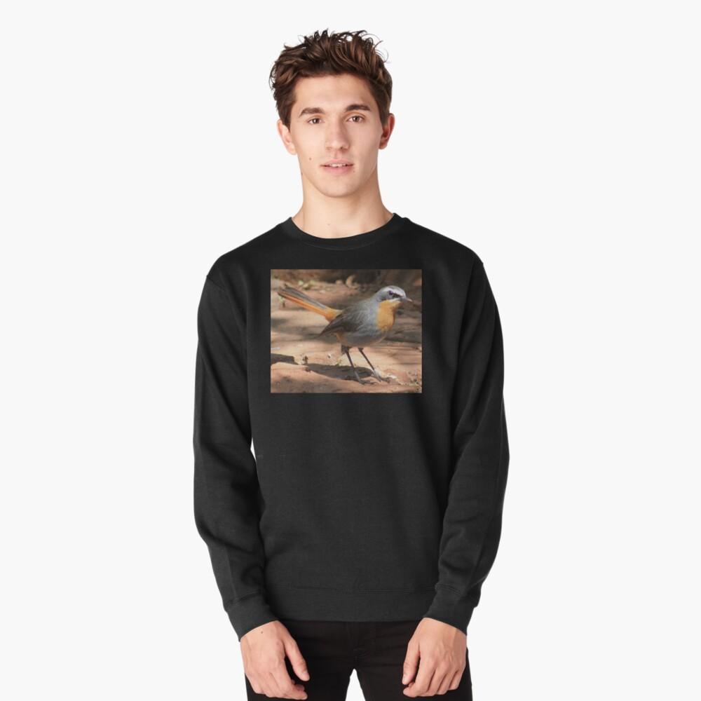 Cape Robin giving me the eye Pullover Sweatshirt