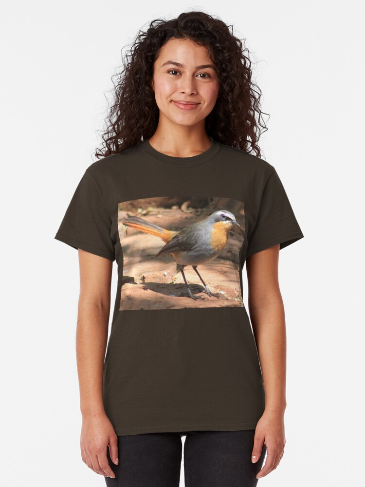 Alternate view of Cape Robin giving me the eye Classic T-Shirt