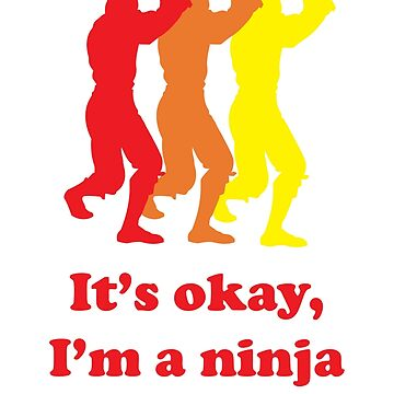 It's Okay I'm A Ninja Funny T-Shirt by funnytshirtstee