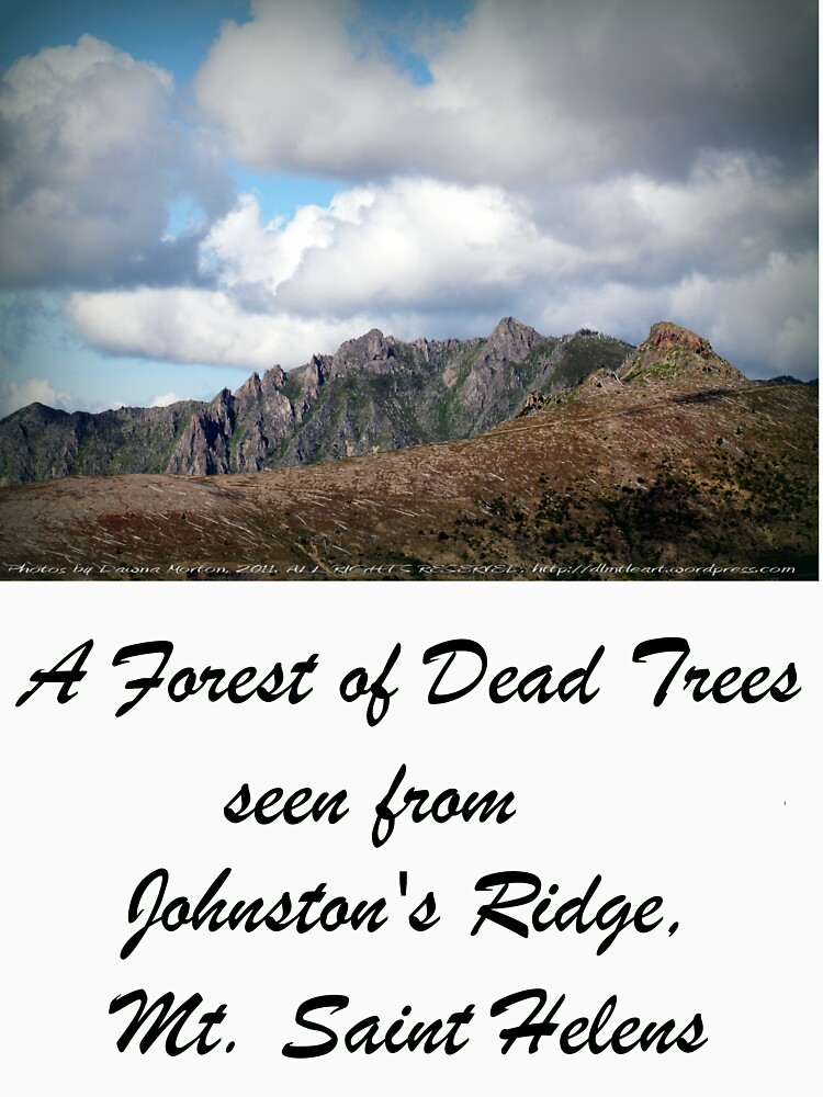 Dead tree devastation near Johnston's Ridge by DlmtleArt