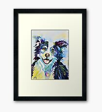 Boarder Collie Framed Print