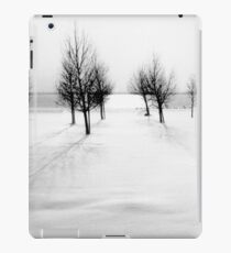 Landscape in snow iPad Case/Skin