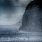 Fighting the Storm by Kasia-D