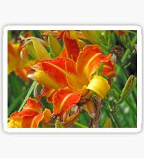 Lily of Bourne Valley Sticker