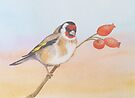 Goldfinch by Val Spayne
