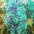 Blue Lillac by Susan  Detroy
