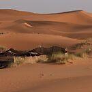 Sahara by DareImagesArt