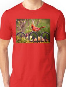 Male Red Cardinal in the Garden T-Shirt