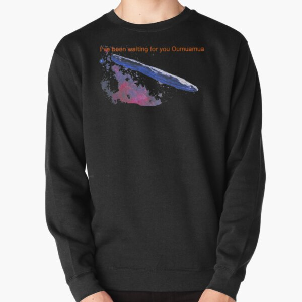 Oumuamua I've been waiting for you Pullover Sweatshirt