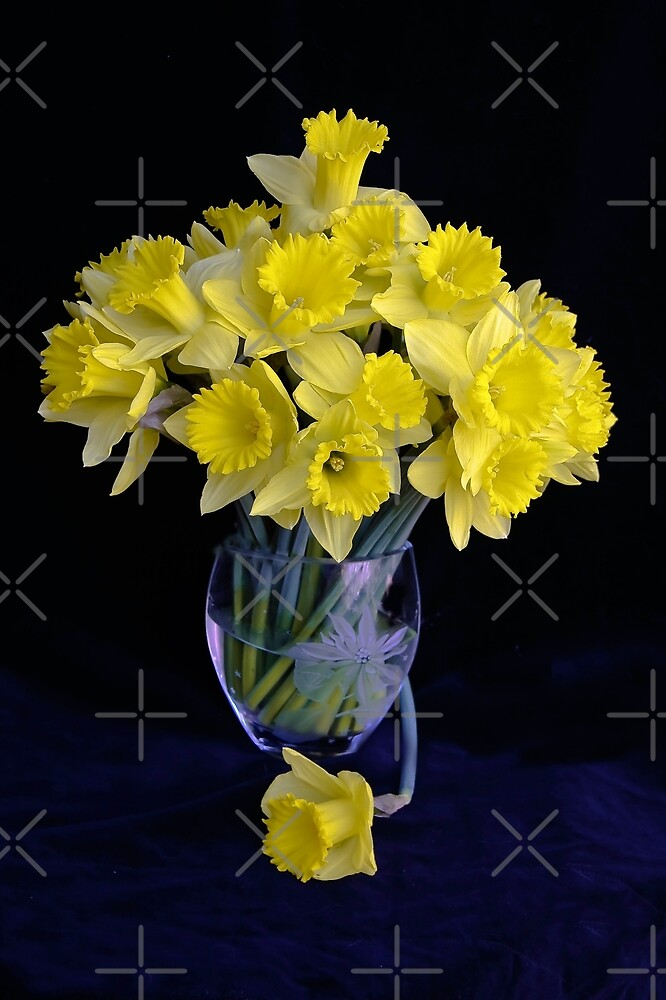 Spring Has Sprung...So I Brought It Indoors! by Heather Friedman