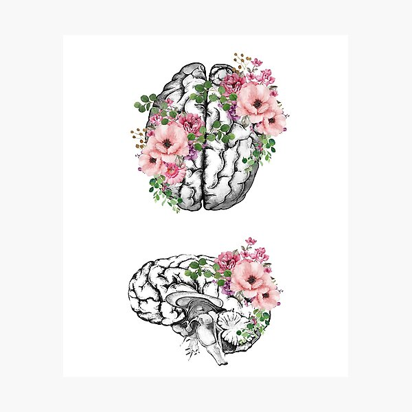 Brain with roses, plant lovers, front and side brain, watercolor Photographic Print