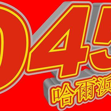 0451 Harbin by gruml