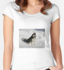 Husky Women's Fitted Scoop T-Shirt