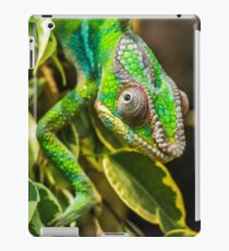Exotic Reptile iPad Case/Skin