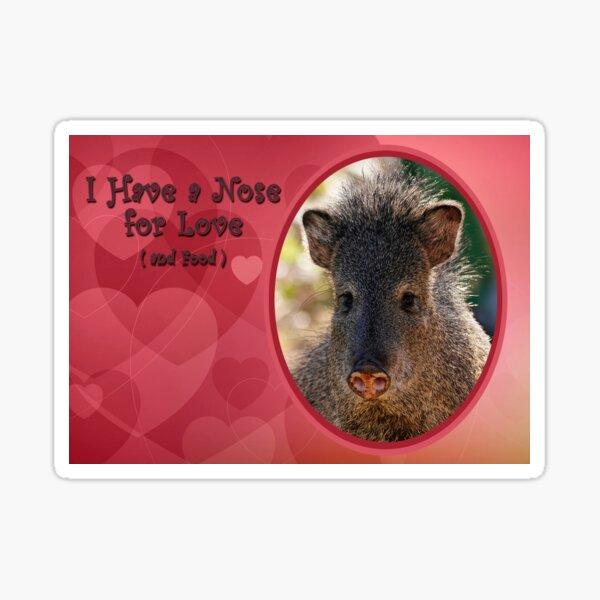 Valentine Javelina Sticker