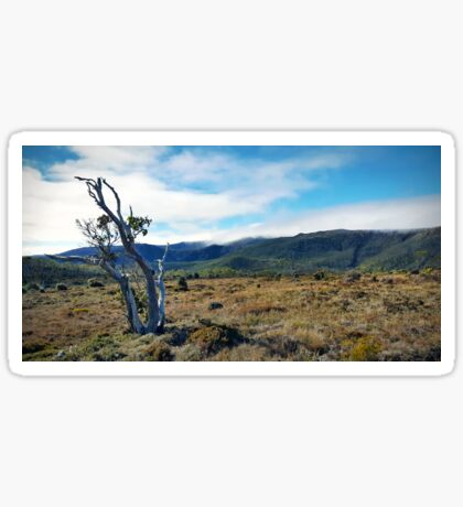 Mount Field Sticker