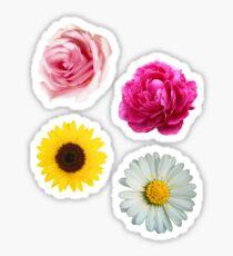 Flowers Set Sticker