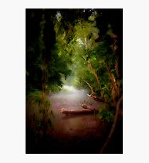 Mystic Creek Photographic Print