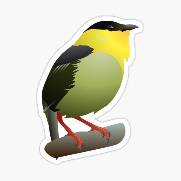Golden-collared Manakin Sticker