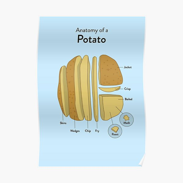 It/'s a Potatoe from Idahoe Dan Quayle POSTER