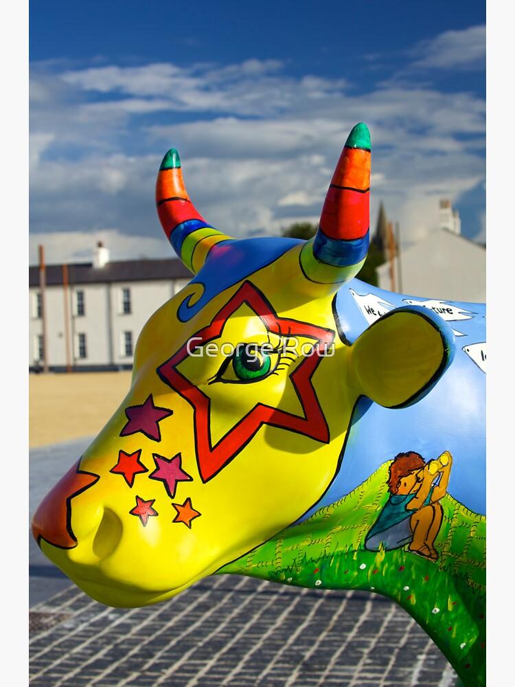 Play Trail - Asperations Cow, Ebrington by VeryIreland