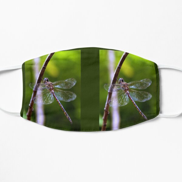 Dragonfly - insect - nature (ED01) Mask