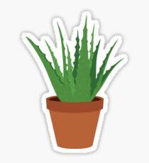 Succulent II - Aloe Sticker