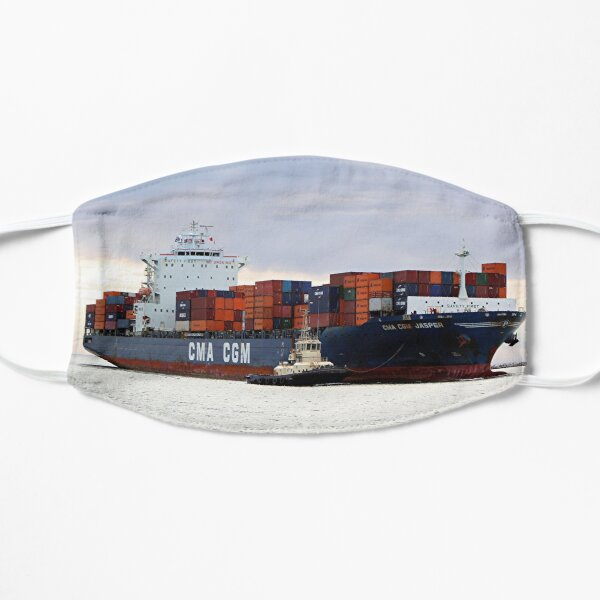 Container cargo ship and tug Mask