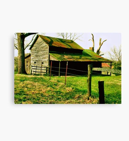 """""""Ol' Mossy Roof""""... prints and products Canvas Print"""
