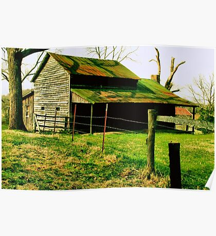 """""""Ol' Mossy Roof""""... prints and products Poster"""