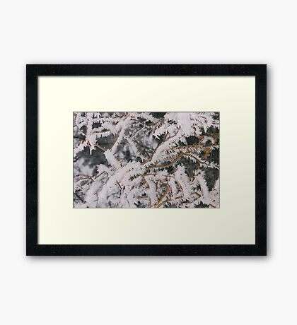 Frosty Needles of Ice Framed Print