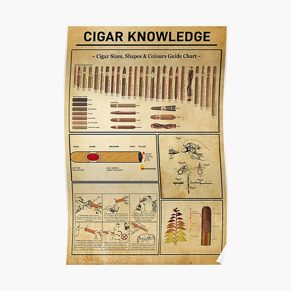 Cigar Knowledge, Cigar Lover Poster