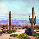 Desert Tranquility by Susan Werby