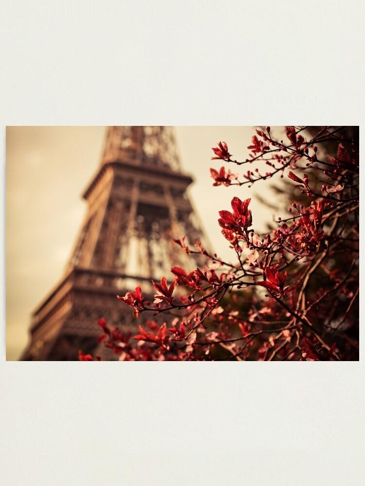 Alternate view of Eiffel Photographic Print