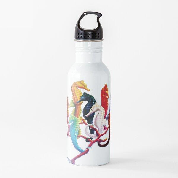 Seahorses Team Water Bottle
