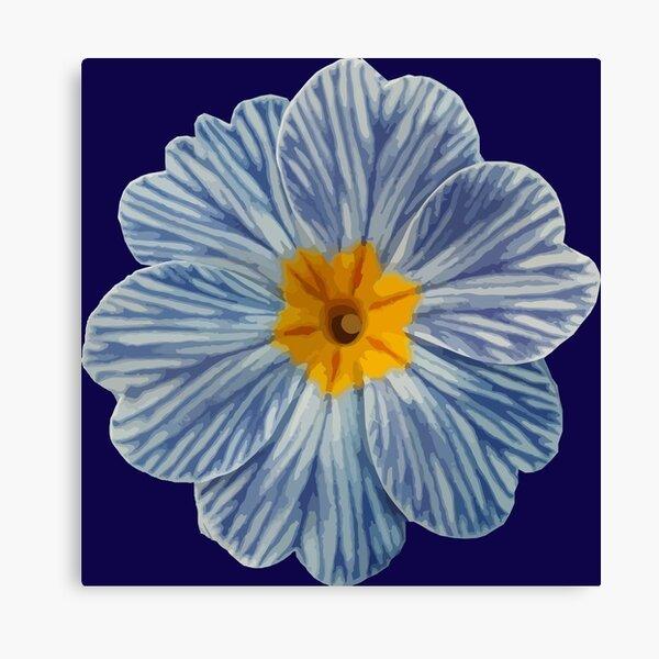 Zebra Blue Primrose Canvas Print