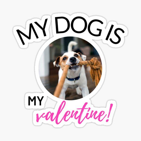 MY DOG IS MY VALENTINE MY DOG IS MY VALENTINE Sticker