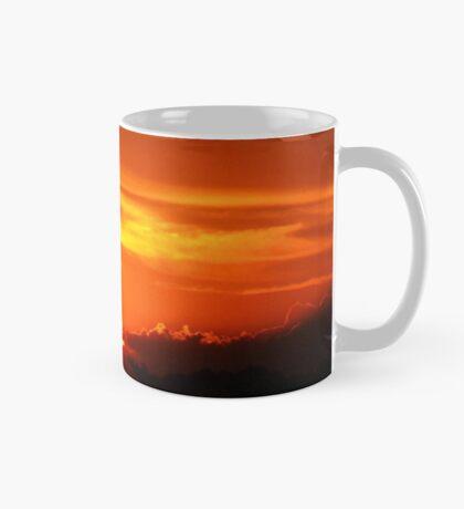 a gift of a friend.. Mug