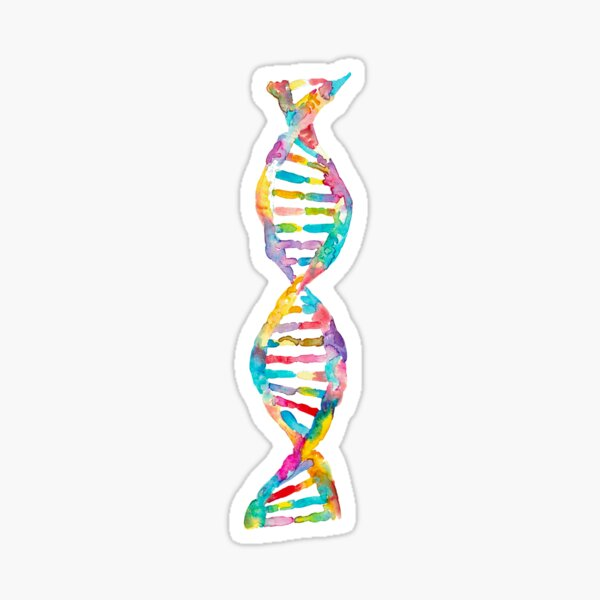 DNA watercolor art Sticker