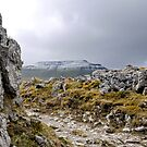 Walking in Limestone Country by mikebov