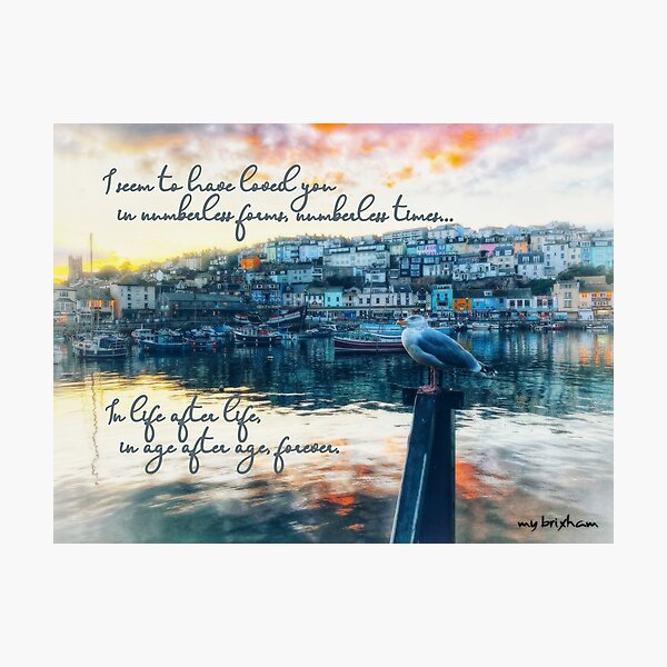 Unending Love in memory of Tommy by My Brixham Photographic Print