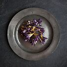 flowers on pewter plate by Dave Milnes